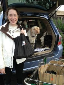 Grocery Shopping Using Reusable Bag