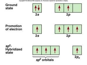 f10-14_the_sp2_hybridiz