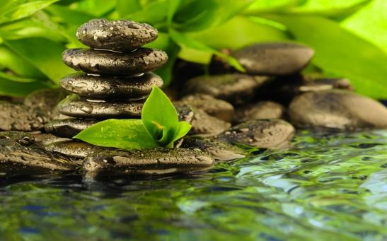 zen-religion-peace-solitude-water-reflection-rocks-drops-leaves