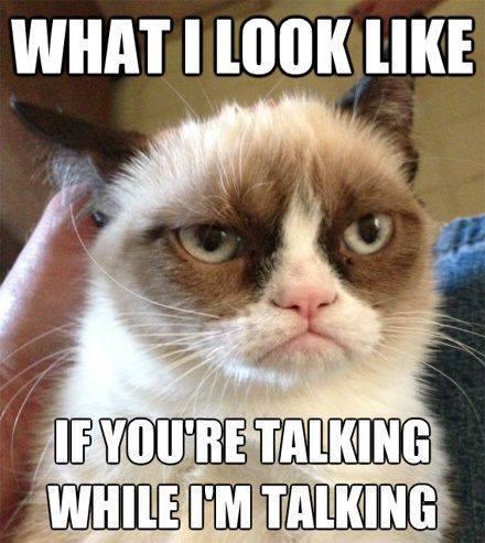 grumpy-cat-no-talking